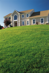 House-on-Grassy-Hill